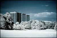 A different Sefton Park