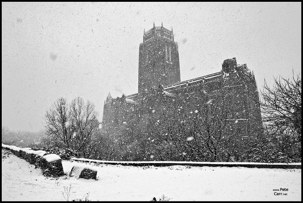 Snow day - II