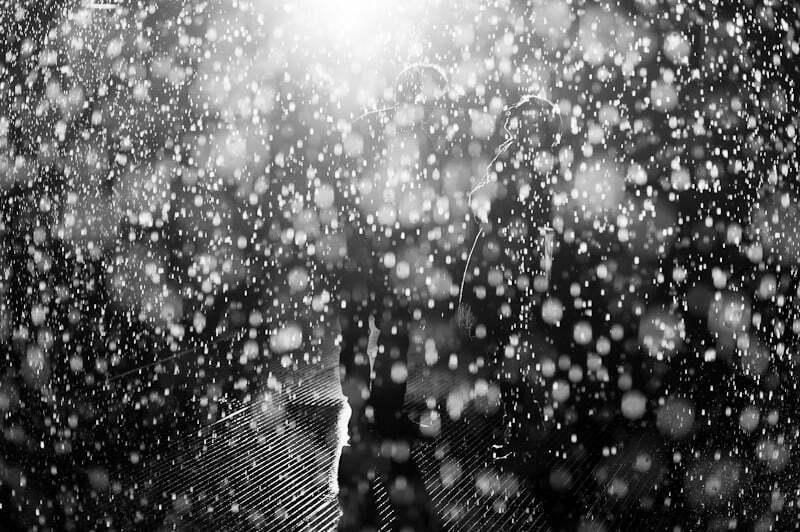 rain-room-DSC_6254